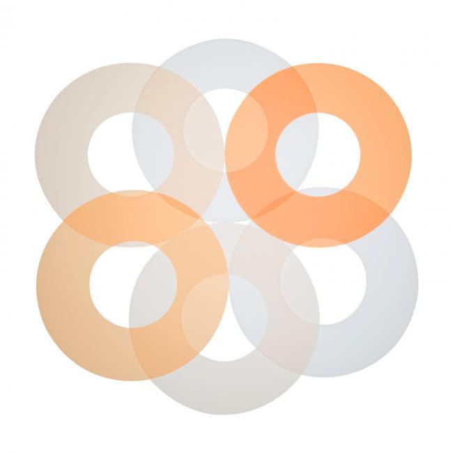 AlienBees Ringflash Filter Set